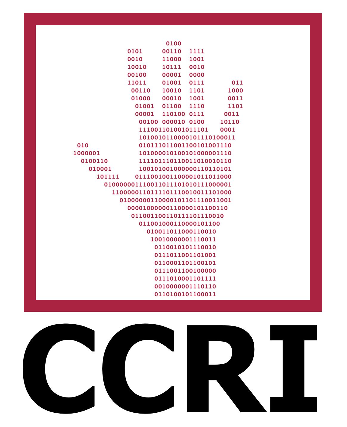 Cyber Civil Rights Initiative