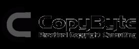 Copybyte